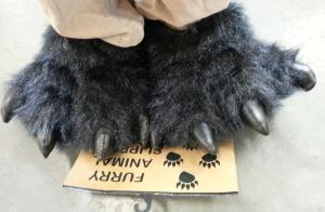 furry animal feet