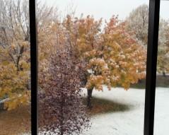 winter through window